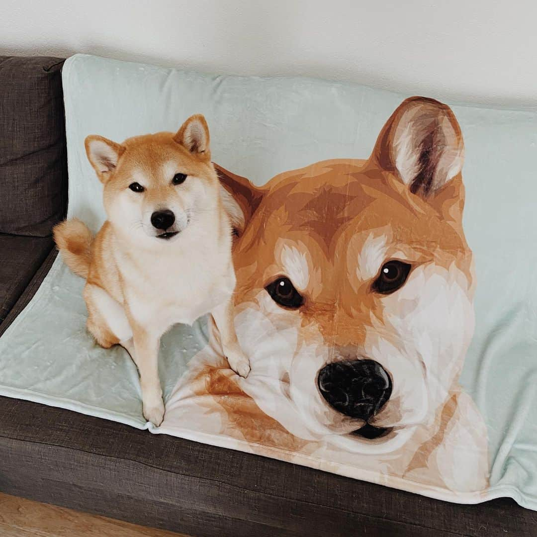 ryo and blanket